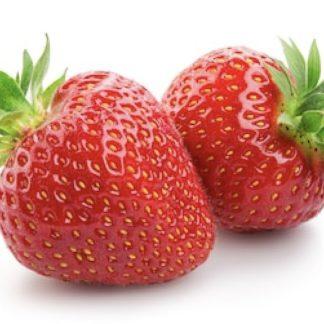 fresa ecológica