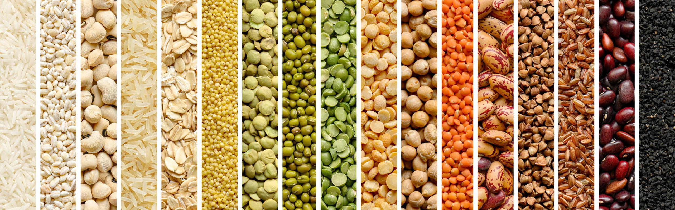 Como cocinar legumbres ecológicas