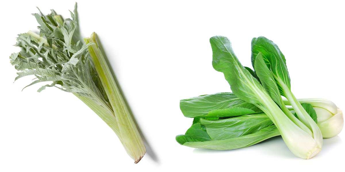 Verduras de invierno ecológicas