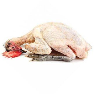 pollo-ecologico-cortado-al-gusto (2) - COMEDELAHUERTA