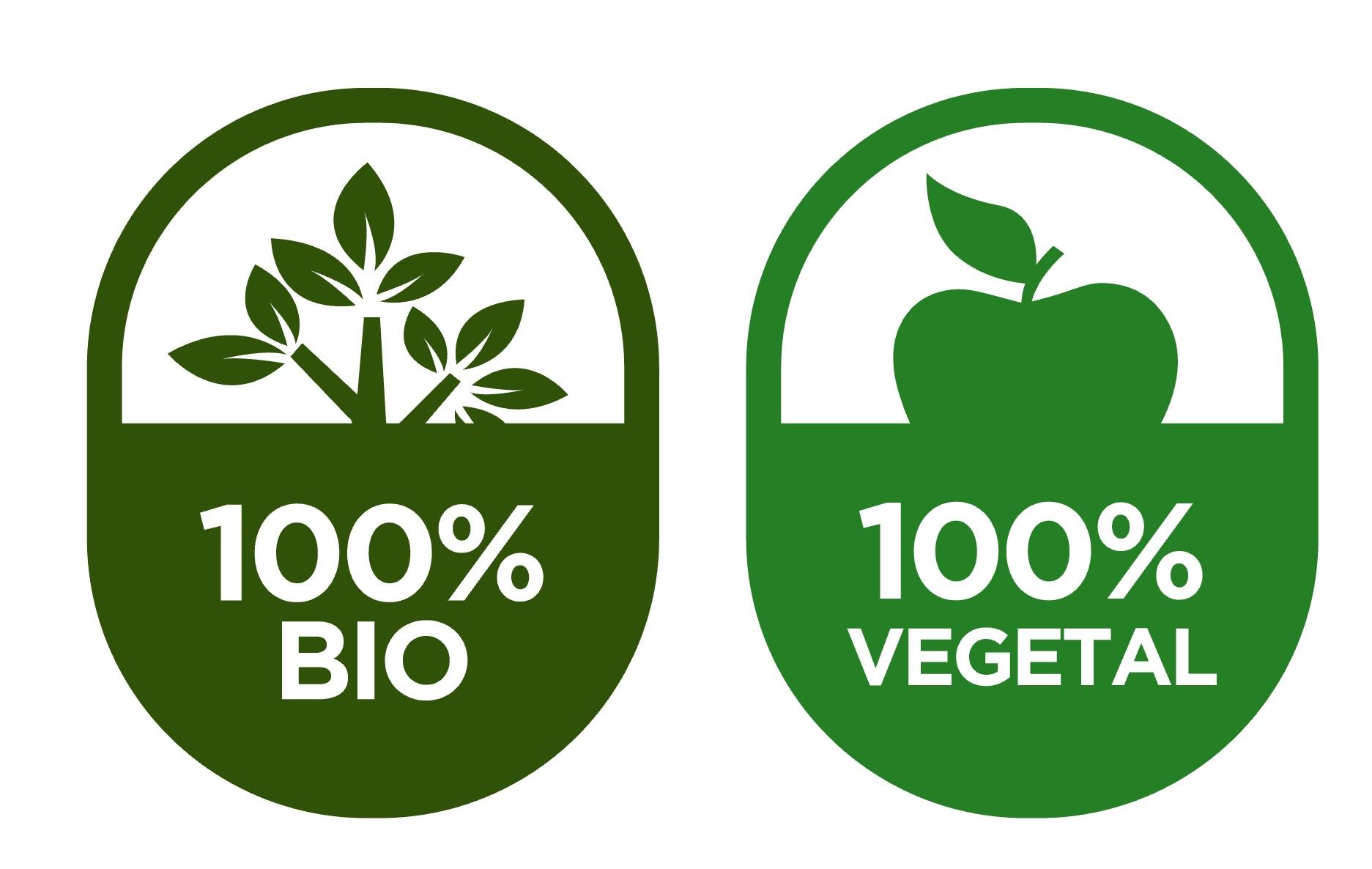 Comida vegetariana y ecológica